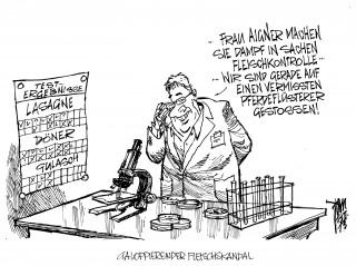Pferdefleisch-Skandal: Ilse Aigner will Fleischkontrollen verschärfen