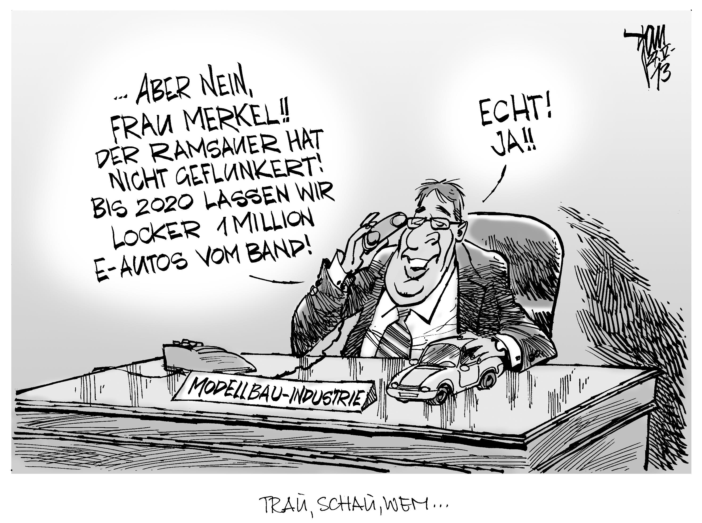 Merkel elektro landau