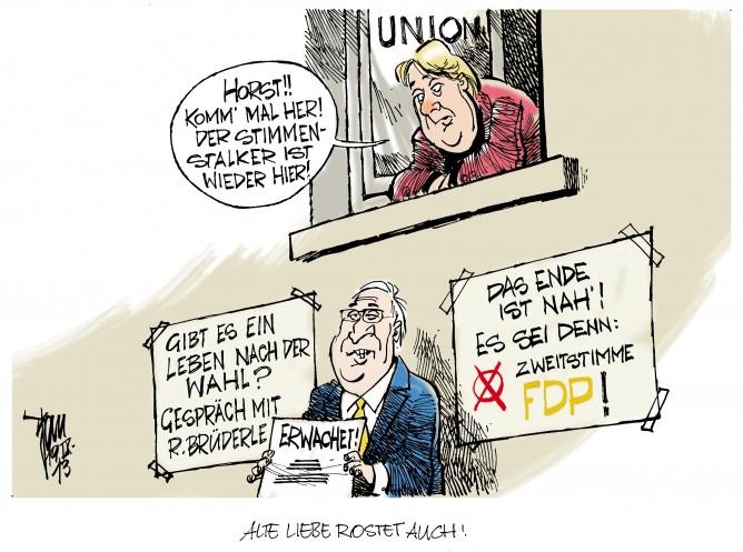 FDP-Wahlkampf: Die FDP setzt auf die Zweitstimmenkampagne