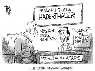 Haderthauer-Affaere 14-08-08