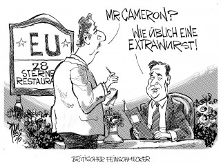 Camerons Reformen 15-05-24