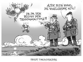 donald-trump-16-11-10